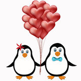 Penguin couple love concept Stock Photography