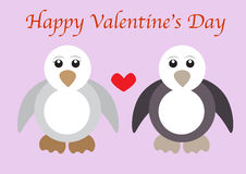 Penguin couples Royalty Free Stock Image