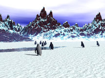 Penguin Departure Royalty Free Stock Photo