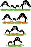 Penguin families Royalty Free Stock Photography