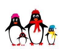 Penguin family. Vector penguin family isolated on white Royalty Free Stock Photography
