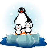 Penguin  family. Mother penguin and her babes on the ice floe Royalty Free Stock Photography