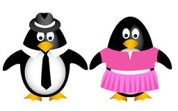 Penguin family with father mother. Cartoon penguin family with father mother Royalty Free Stock Photography