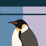 Penguin flat postcard Royalty Free Stock Photography