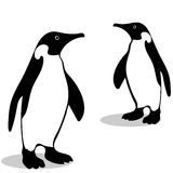 Penguin friendship symbol loyalty Stock Photography