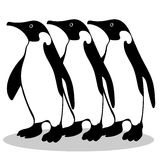 Penguin friendship symbol loyalty Stock Images