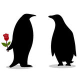 Penguin friendship symbol loyalty love Stock Images