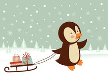 Penguin getting ready for Christmas Royalty Free Stock Photo