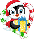 Penguin with a gift Royalty Free Stock Photos