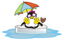 Penguin girl is on vacation and swimming on the ice Stock Photo
