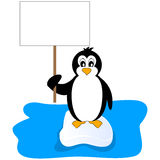 Penguin holding a placard Royalty Free Stock Photo