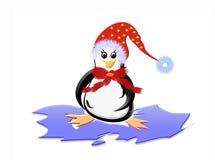 Penguin on ice Royalty Free Stock Photo