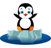Penguin on Ice royalty free illustration