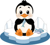 Penguin on ice floe Royalty Free Stock Photography
