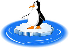 Penguin and ice floe Stock Images