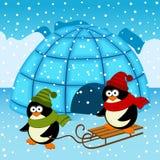 Penguin igloo. Vector  illustration, eps Royalty Free Stock Photos