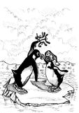Penguin Kiss Stock Image