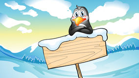 A penguin leaning above the empty wooden signboard Stock Images
