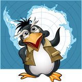 Penguin lecturer. Illustration with penguin in glasses who talks about Antarctica against contour map vector illustration