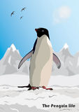 Penguin with mountains Royalty Free Stock Photo
