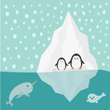 Penguin, narwhal and seal family Iceberg Blue water Snow in the sky Flat design Winter background Stock Image