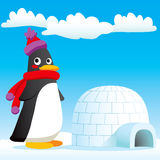 Penguin New Home. Happy penguin standing in front of his new igloo home Royalty Free Stock Images