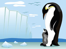 Penguin and offspring. With a glacier landscape at the back Royalty Free Stock Photos