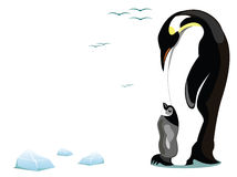 Penguin and offspring. Illustration of a mother penguin and offspring Royalty Free Stock Images