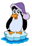 Penguin On Iceberg Vector Illustration Royalty Free Stock Images