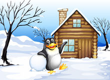 A penguin outside the house Royalty Free Stock Image