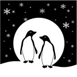 Penguin Pair Stock Photo
