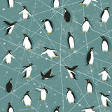 Penguin pattern Stock Photo
