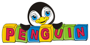 Penguin peek up from the cubes. Muzzle of cute penguin stick out fron the blocks with letters penguin Royalty Free Stock Images