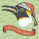 Penguin 02 Stock Photos