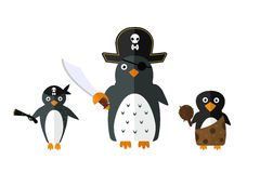 Penguin pirate vector animal character illustration. Stock Photography