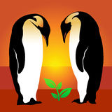 Penguin. Plant Royalty Free Stock Images