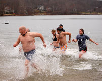 Penguin Plunge. A brave group of volunteers jump into a cold winter lake to raise money for the Special Olympics at a Penguin Plunge event. December 5, 2009 stock photography