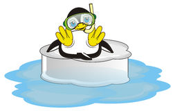 Penguin ready to the diving Stock Photos