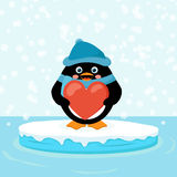 Penguin with red heart Stock Photography