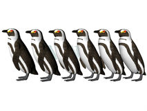 Penguin Row Royalty Free Stock Images