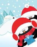 Penguin's Xmas Gift Stock Image