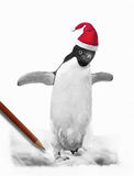 Penguin In Santa Hat. Cute Penguine wearing santa hat.  Hand drawn graphite pencil sketch with pencil. A Great Christmas card design Royalty Free Stock Photography