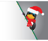 Penguin in santa hat peeking Stock Images