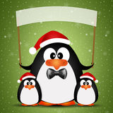 Penguin with Santa's hat for Christmas Stock Images