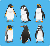 Penguin set. Standing Penguin Set Vector Illustration Stock Photos