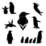 Penguin set vector. Penguin set of black silhouettes. Icons and illustrations of animals. Wild animals pattern stock illustration