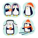 Penguin set vector characters Stock Image
