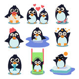 Penguin Set Vector Illustration, with Penguins in Royalty Free Stock Images