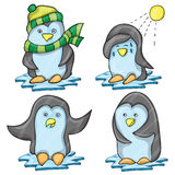 Penguin in Several Poses Royalty Free Stock Image