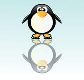 Penguin on skate Stock Photo